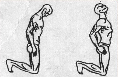 Пять тибетских жемчужин - упражнение 3