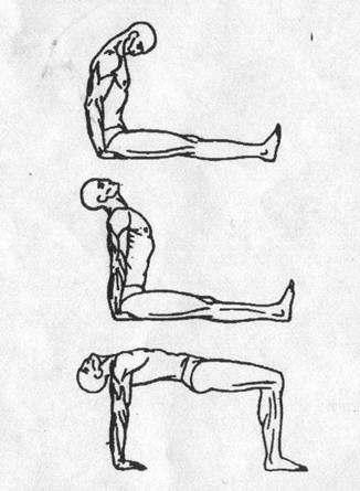 Пять тибетских жемчужин - упражнение 4