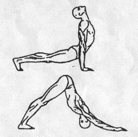 Пять тибетских жемчужин - упражнение 5
